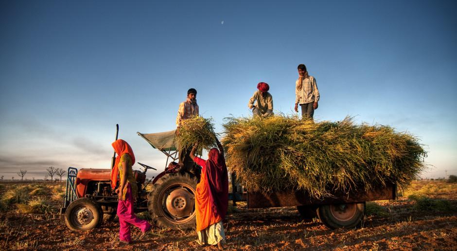 Indie: Rolnicze oblężenie Delhi w proteście przeciwko liberalizacji rynku rolnego