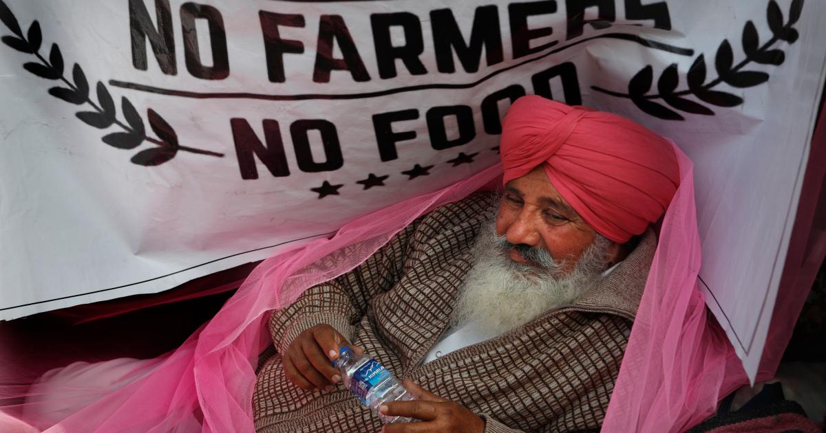 مزارعون في الهند يحتجون بالقرب من البرلمان للمطالبة بإلغاء القوانين |  أخبار الزراعة